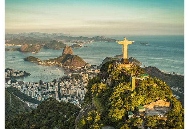 Brazil: A Wildlife Safari