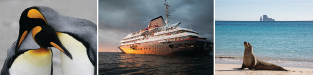 Sail Antarctica or the Galapagos Islands in luxury with Silversea!