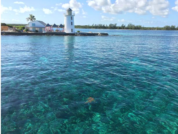 Cruise the Caribbean roundtrip Miami!