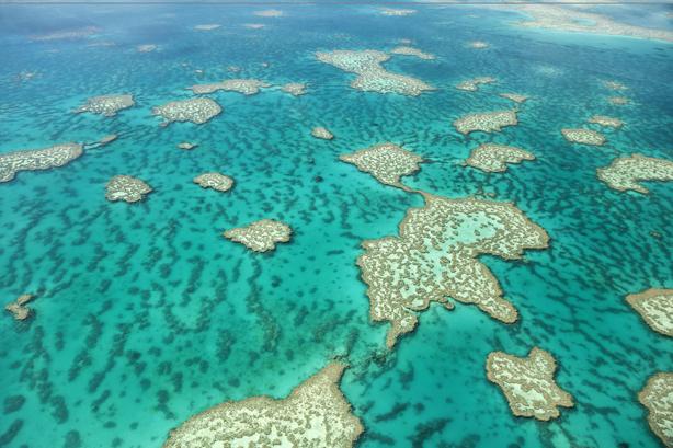 Cruise Australia/South Pacific