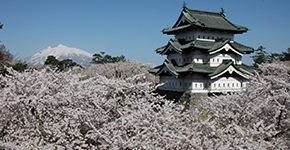 Destination of the Month: <br />Japan
