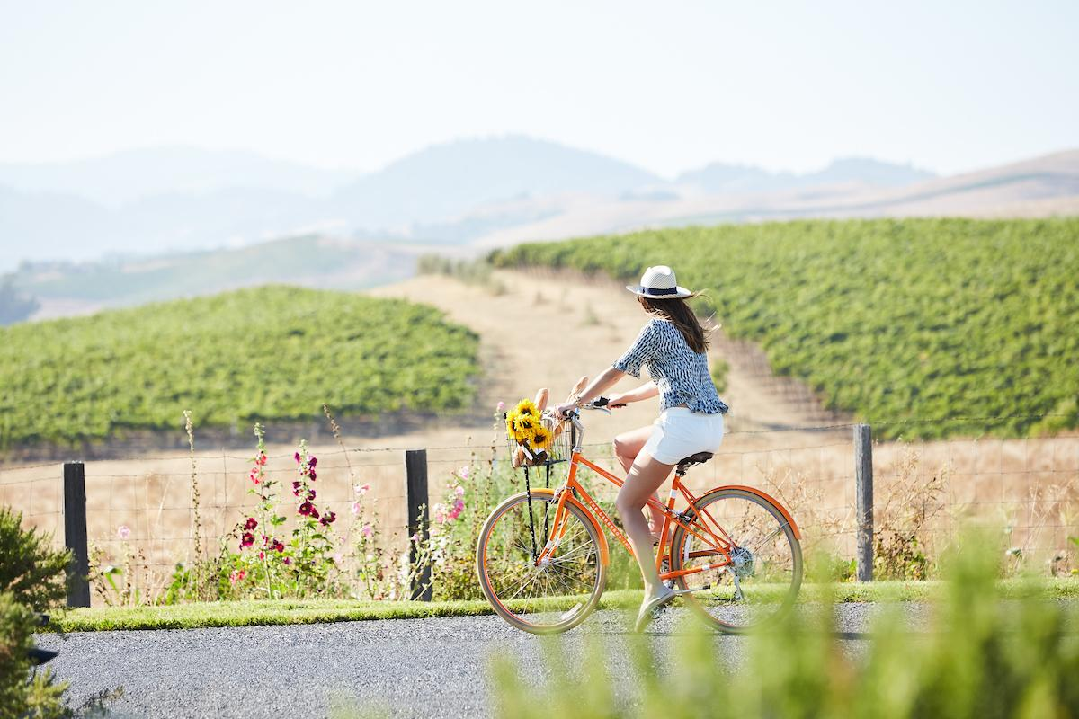 Cruise around Carneros on one of our public bikes.