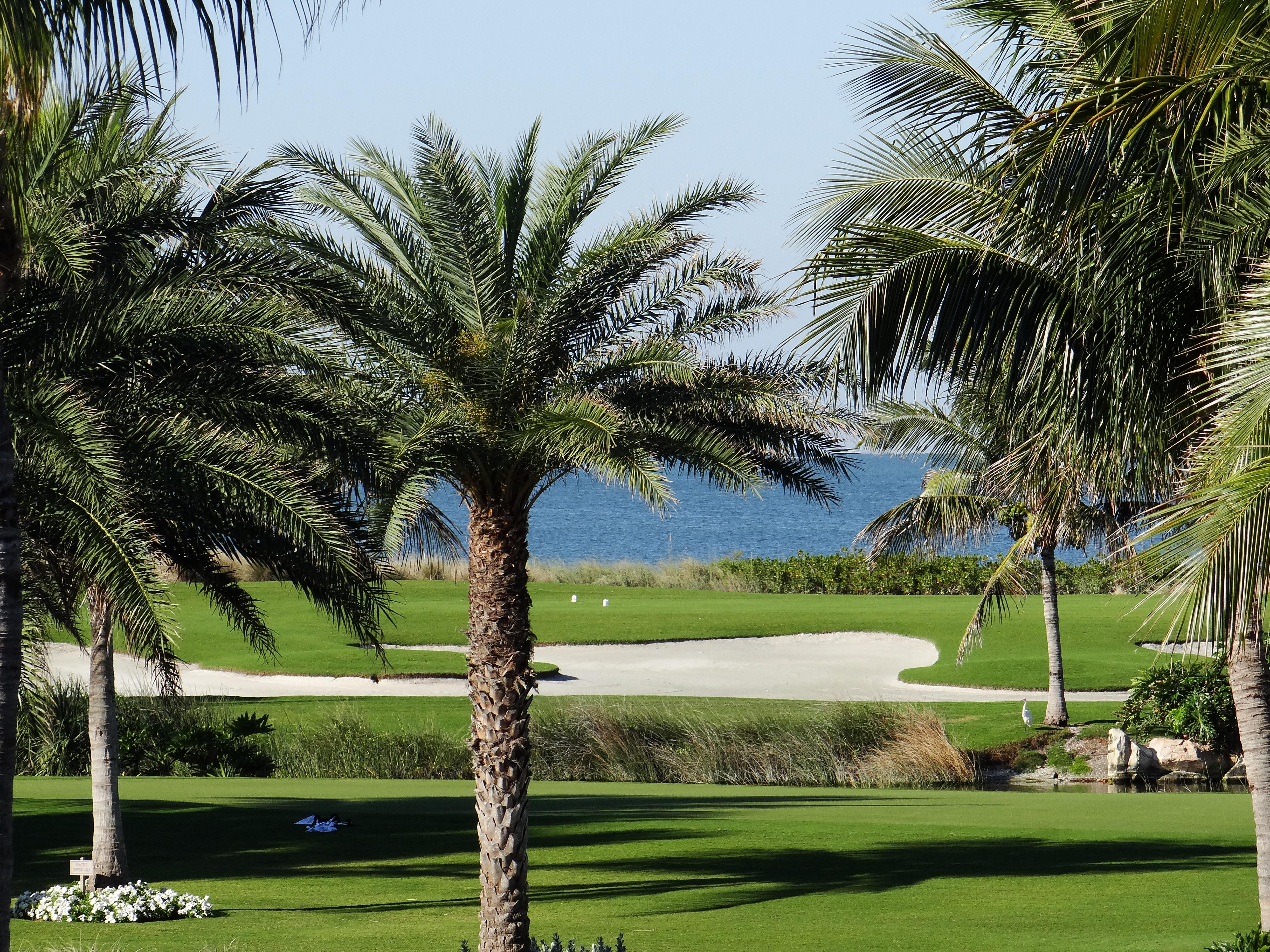 One of Southwest Florida's only Gulf-front golf courses, the Captiva Course is a pristine executive golf course.
